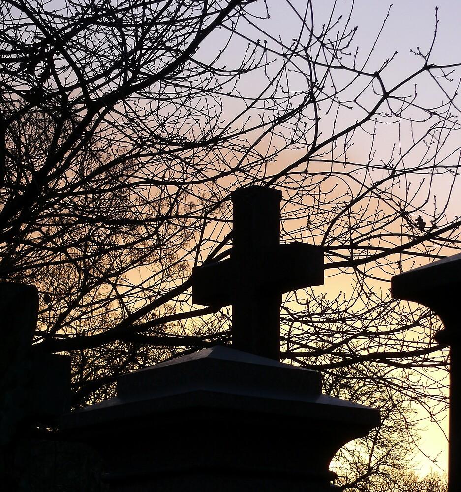 Dawn by mmrich