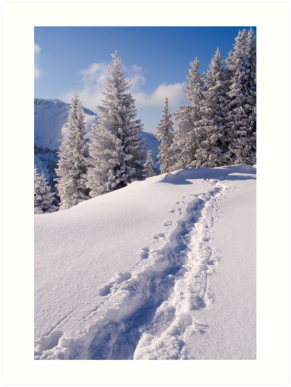 Winter Hike by Walter Quirtmair