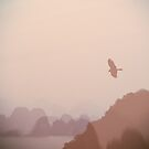 In Flight over Halong Bay by Kasia-D