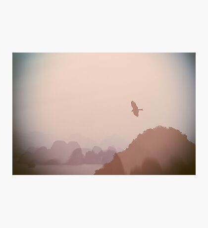 In Flight over Halong Bay Photographic Print