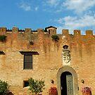 Castello di Oliveto by Gino Iori