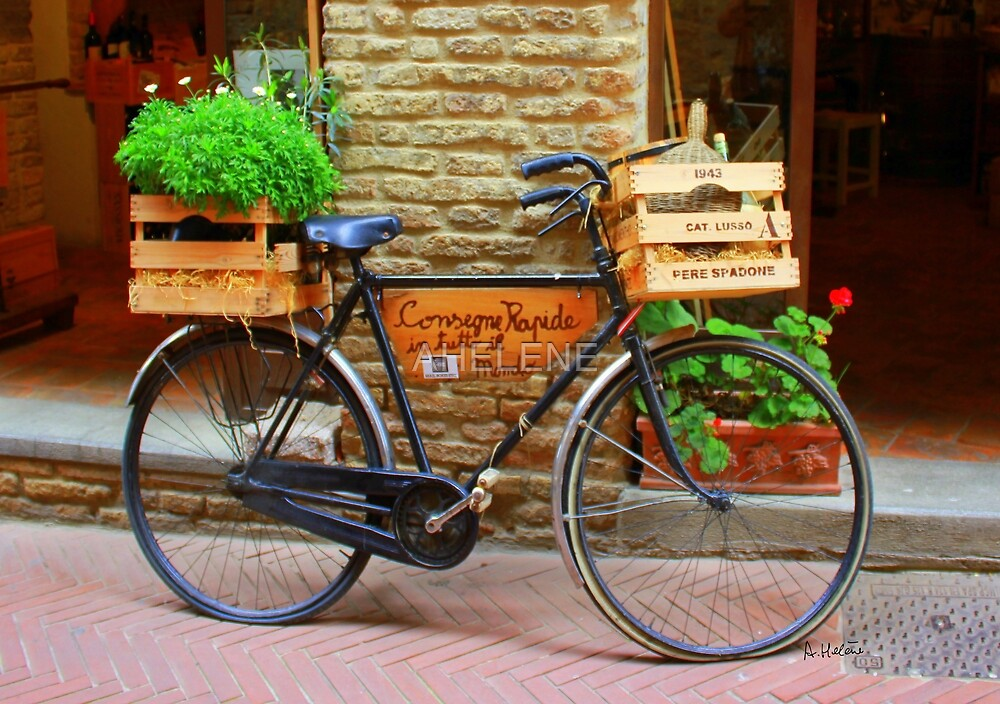 Old bicycle in Tuscany by AHELENE