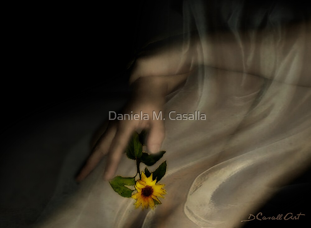 Heaven in a wild flower by Daniela M. Casalla