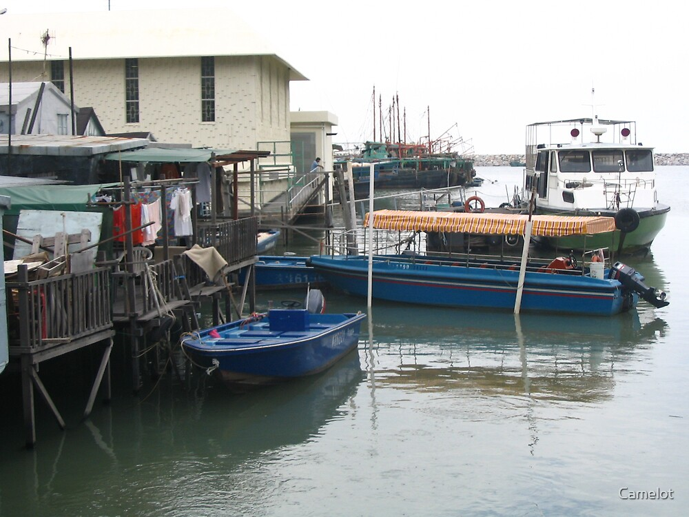 Fishing boats at Tai O village Lantau Island - Hong Kong by Camelot