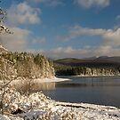Catskills Winter Morning by Nancy de Flon