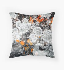 Orange and Grey Lichen #1 Throw Pillow