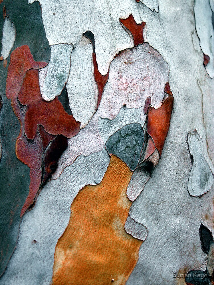 Paper Bark #1 by Testing Testing
