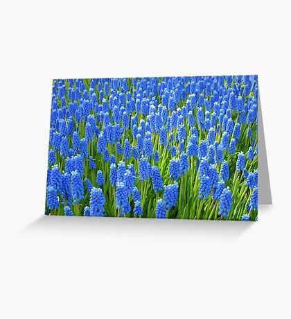A Sea of Blue Greeting Card
