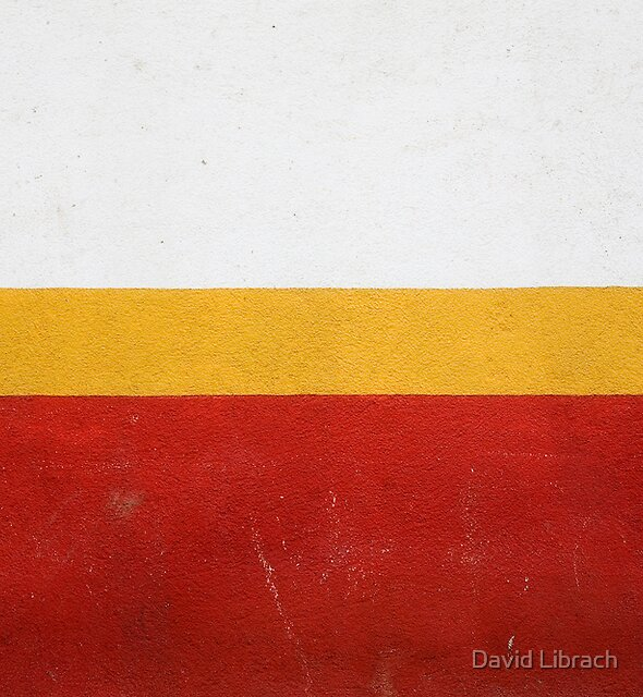 White, Yellow and Red by David Librach - DL Photography -