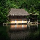 House on the Rio Dulce, Guatemala by Heather Friedman