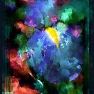 Dancing Iris by Carolyn Staut