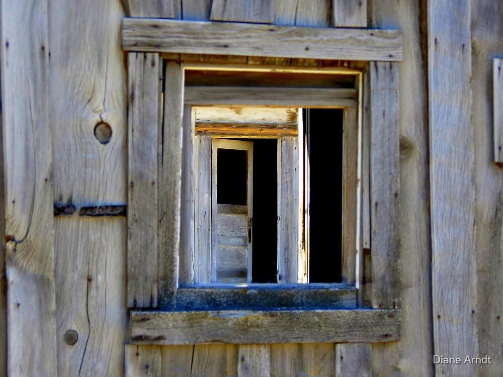 Through The Window And Door by Diane Arndt