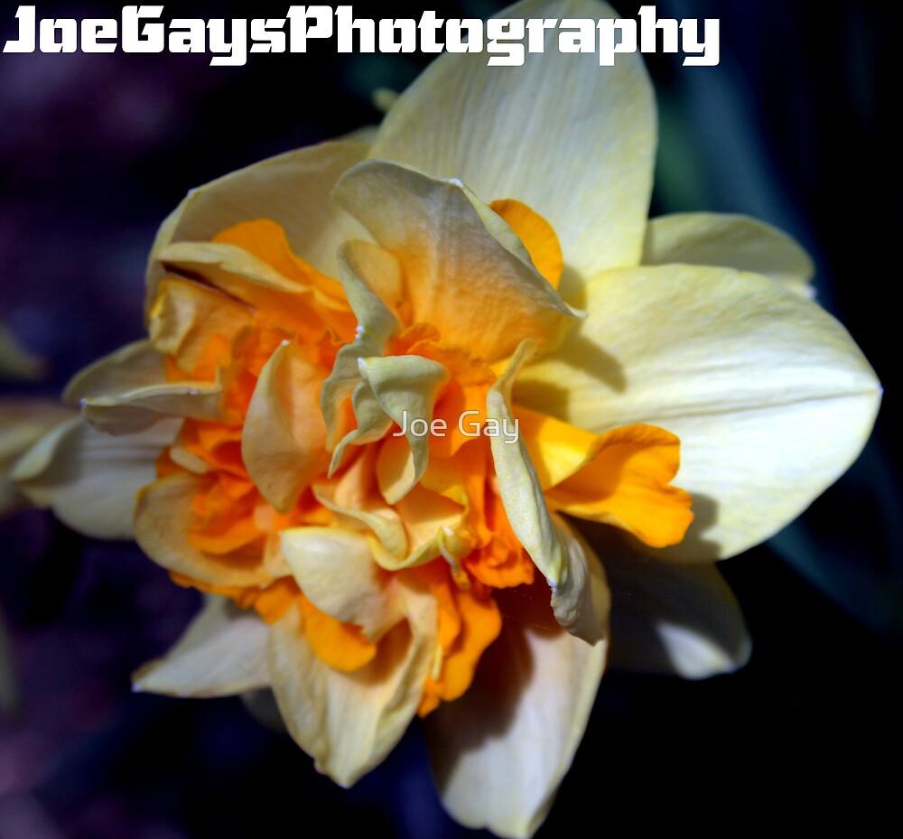 Living Flower by Joe Gay