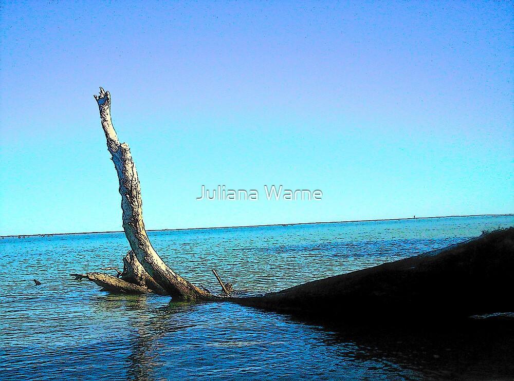 Risen Depths 2 by Juliana Warne