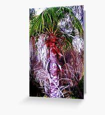 Cooloola Island Palm Greeting Card