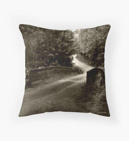 Swann Mill Road Throw Pillow