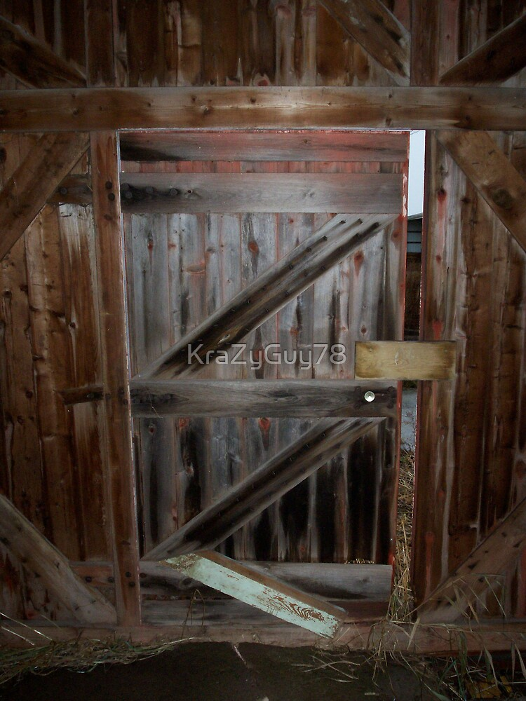 Old barn door by KraZyGuy78