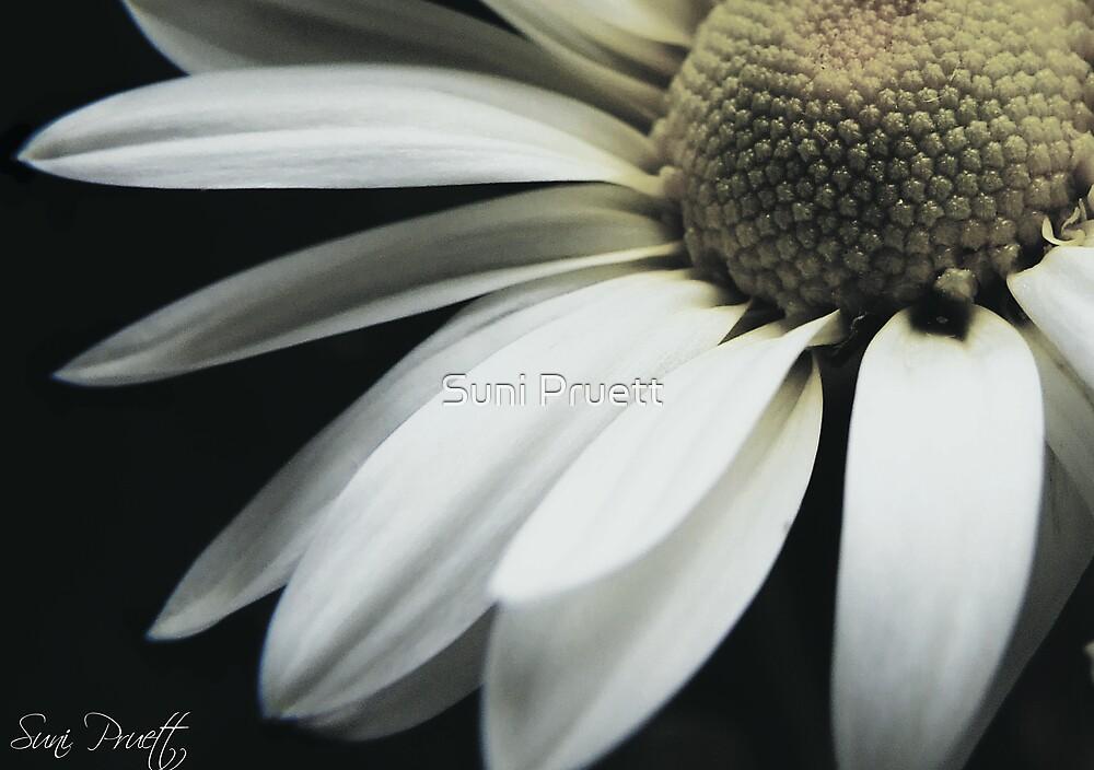 Intimate by Suni Pruett