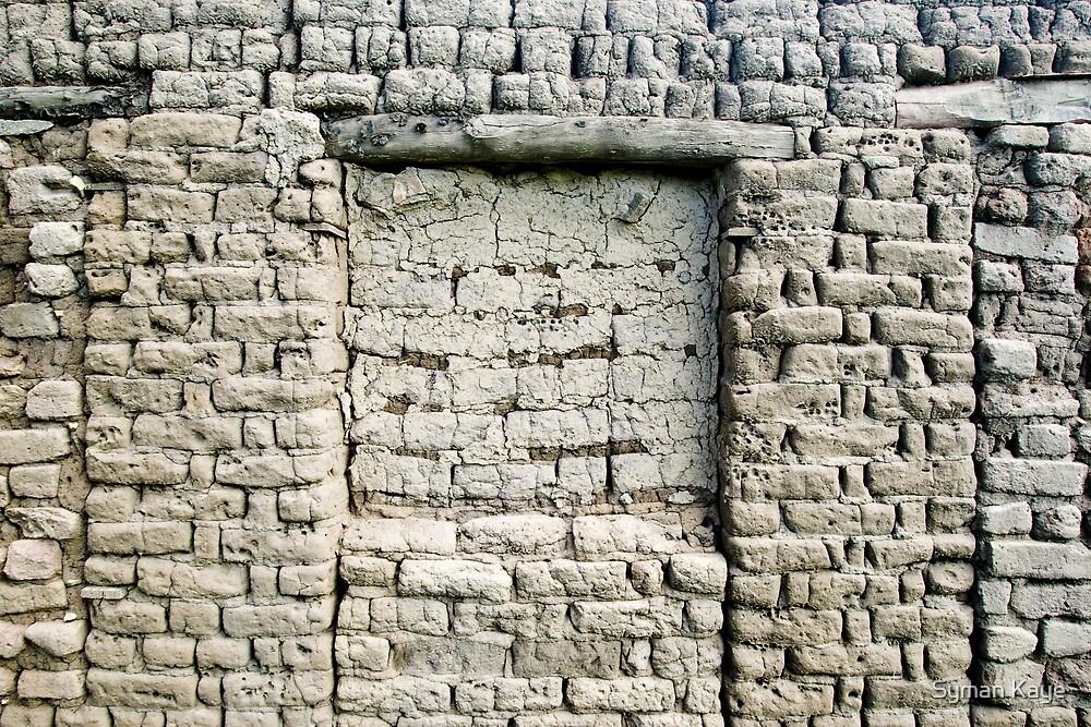 Mud Covered Brick Wall by syman