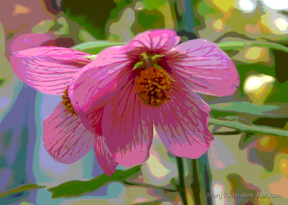 Pink Delight by Mary Kaderabek-Aleckson
