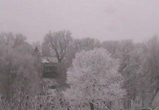 Hoar-frost in Minnesota by thomasraven