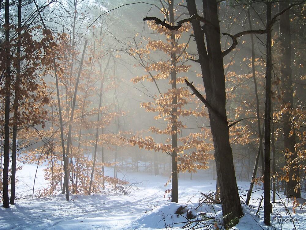 Daybreak by dmosher
