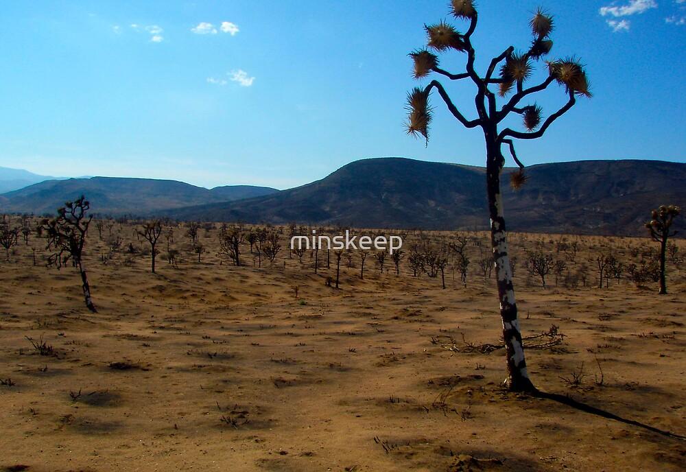 Desert by minskeep