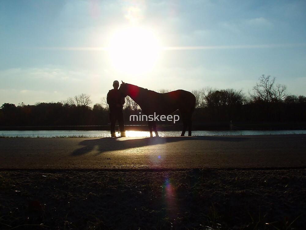 Sun Set by minskeep