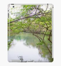 Homosassa Springs iPad Case/Skin
