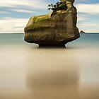 Sphinx Rock  by earlcooknz