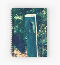 Cicada Art If you like,  purchase, try a cellphone cover thanks! Spiral Notebook