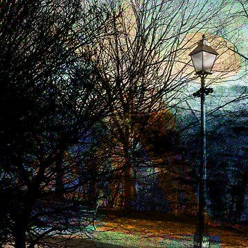 Lamplight by Sherif