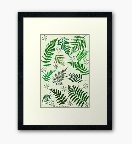 Ferns  & Leaves  [534  views] Framed Print