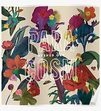 Washed Out Paracosm Album Cover Poster