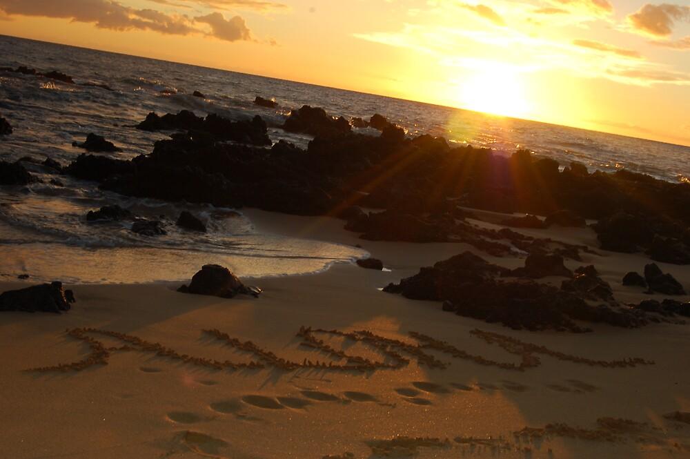 Aloha by kclassick