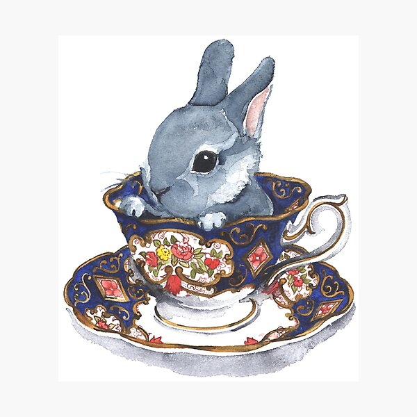 Heirloom Bunny Photographic Print