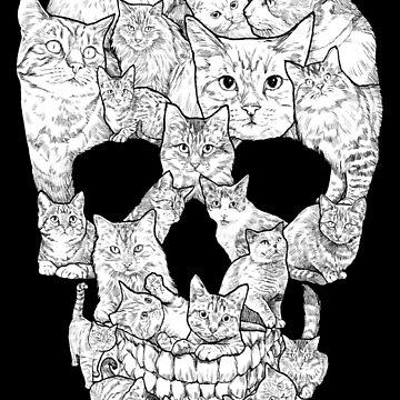 Cráneo de gato de designbydinny