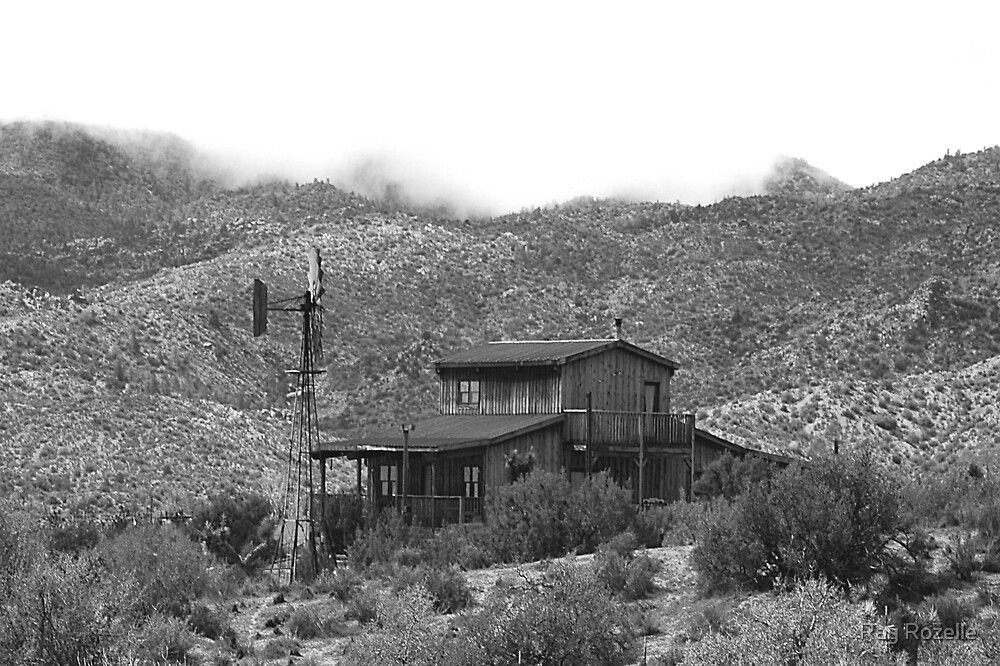 Morongo Valley  by Ray Rozelle