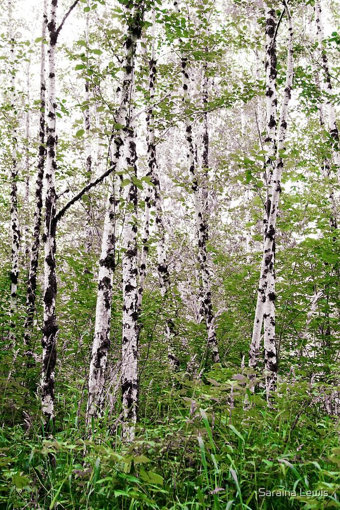 the peaceful trees by Saraina Williams