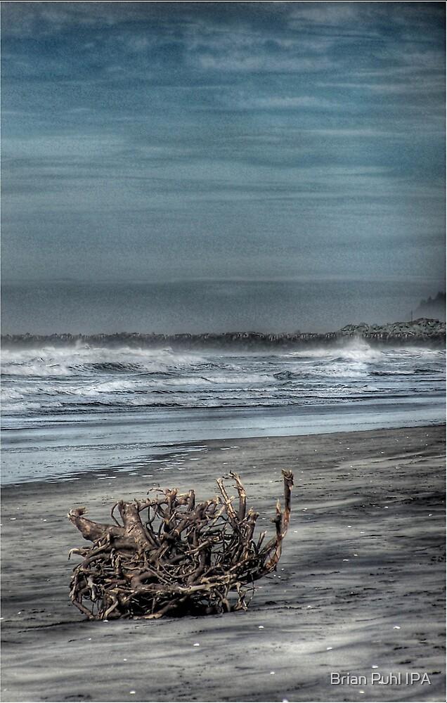 Swept Ashore by Brian Puhl IPA
