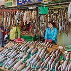 Jagaichi Fish Market in Busan - Korea by TonyCrehan