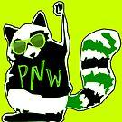 PNW Rebel Raccoon by EvePenman