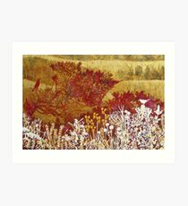 """Byron Bay Dwarf Heath # 1""  Art Print"