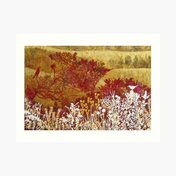 Byron Bay Dwarf Heath 1 Art Print