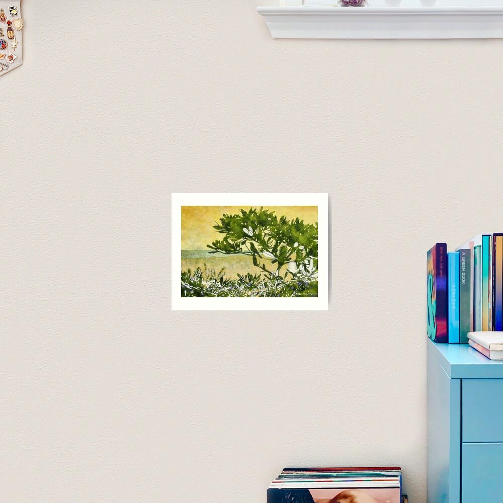 Fern-leafed Banksia Art Print