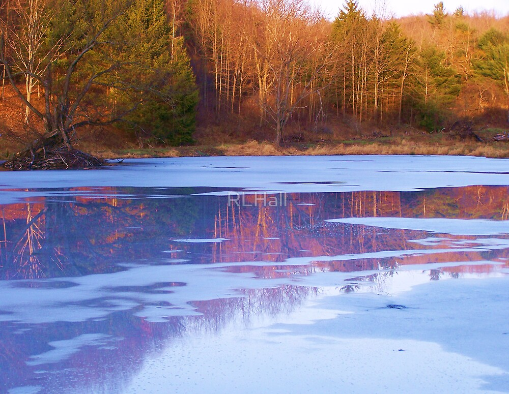 A Pond's Reflection by RLHall
