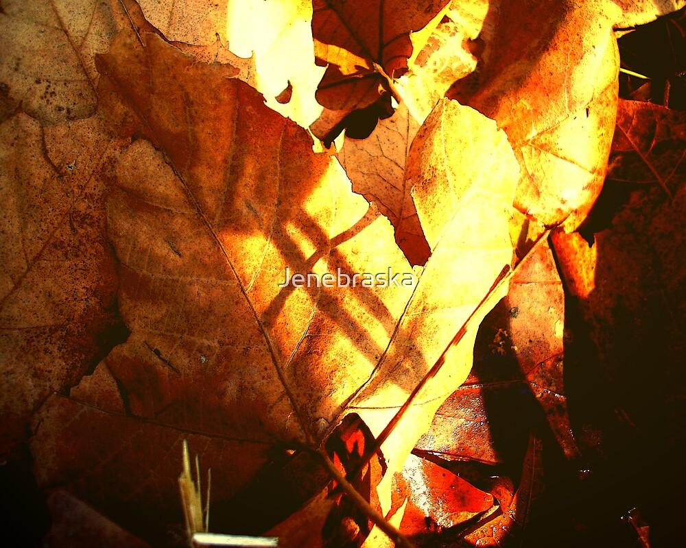 Golden Leaves among Shadows by Jenebraska