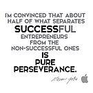 success is pure perseverance - steve jobs by razvandrc