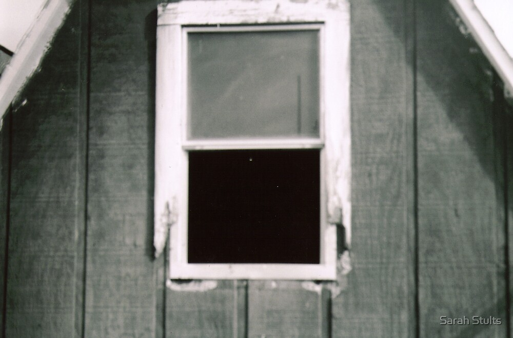 Barn window  by Sarah Stults