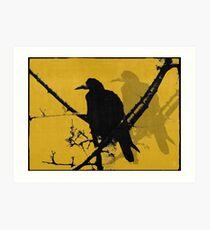 Raven 2008 Art Print
